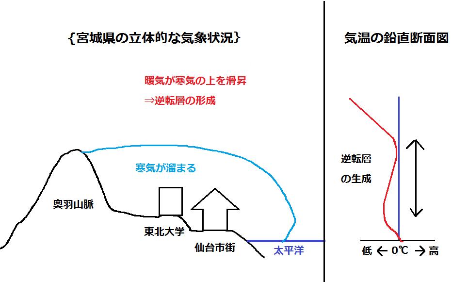 仙台初雪解析