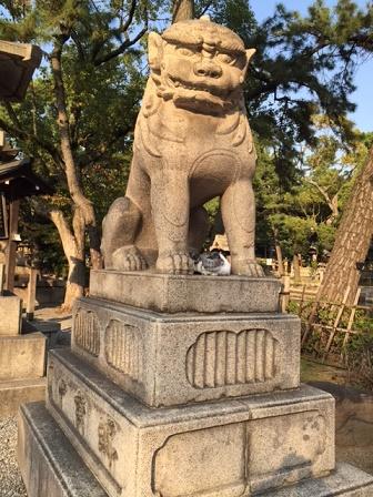 住吉大社 狛犬