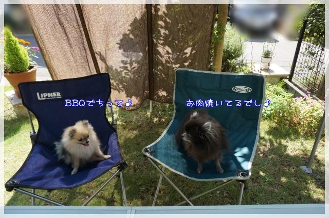 お庭BBQ1 15-11