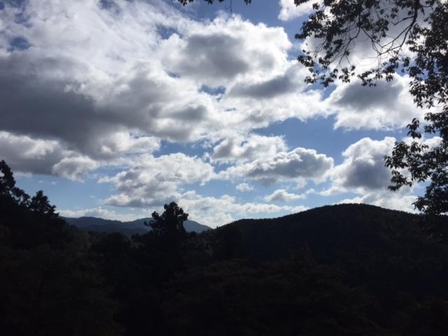 本殿金堂近くから見た風景