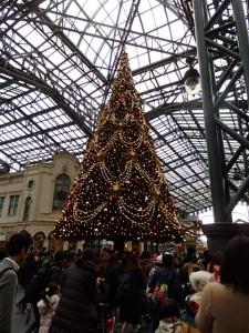 PB123044 201511東京ディズニー