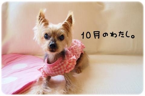 待てないオンナ (1)