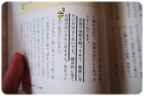 気になる文 (2)
