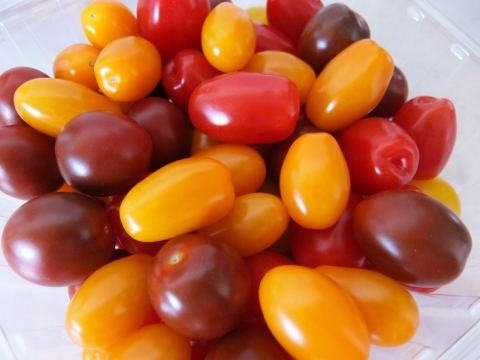 コストコ 戦利品 商品 値段 円 新商品 新しい トマト メドレー
