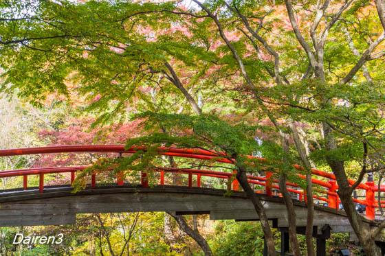 伊香保河鹿橋の紅葉