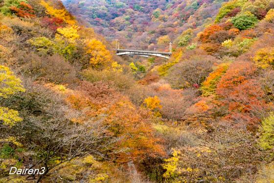 旧信越本線 新幹線開通まで使用