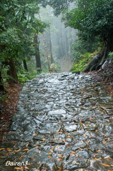 雨にぬれる大門坂