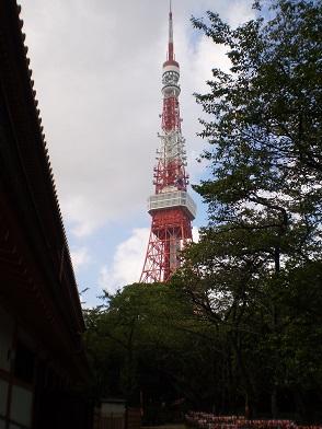 増上寺 6