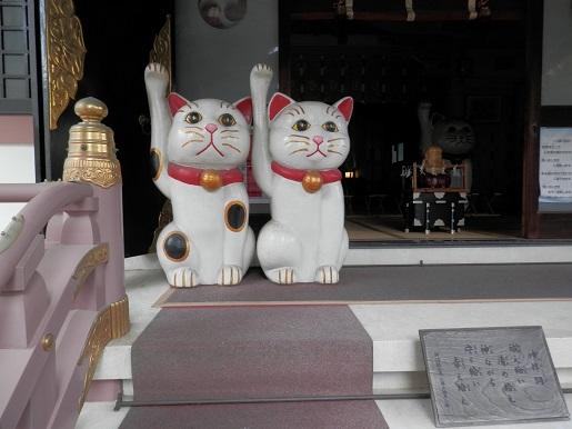 今戸神社 5