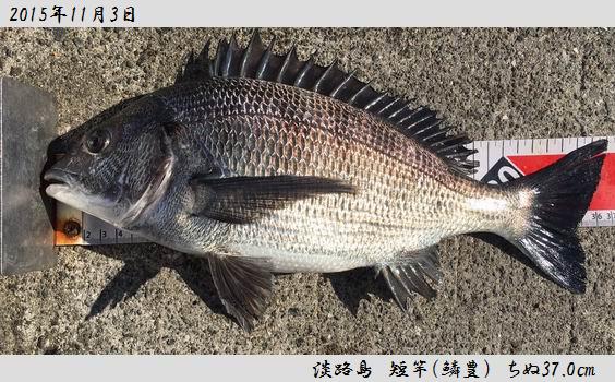 20151103awajisima370.jpg