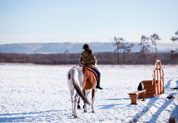 Winter-Rider-620x430.jpg