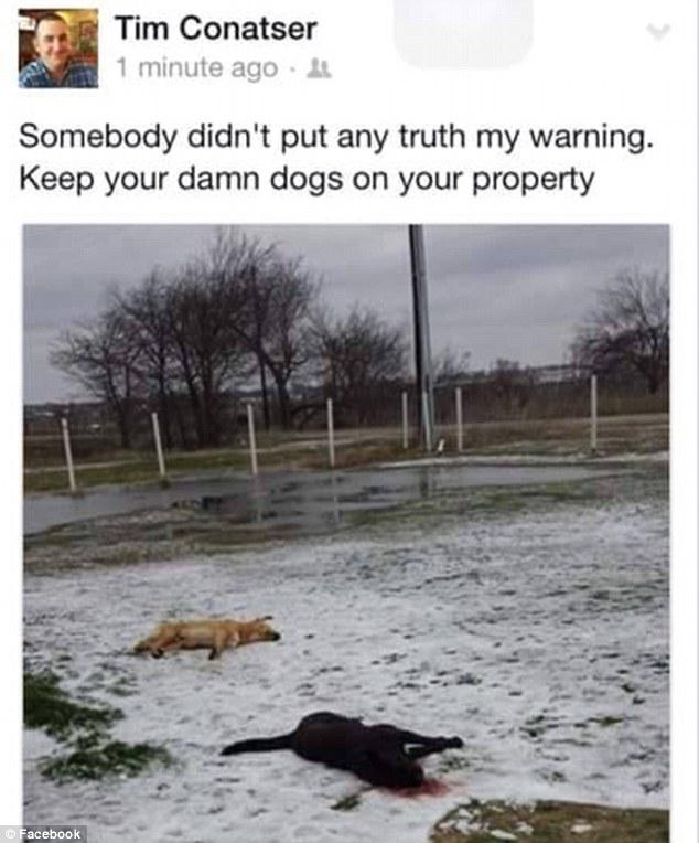 テキサス 犬」射殺