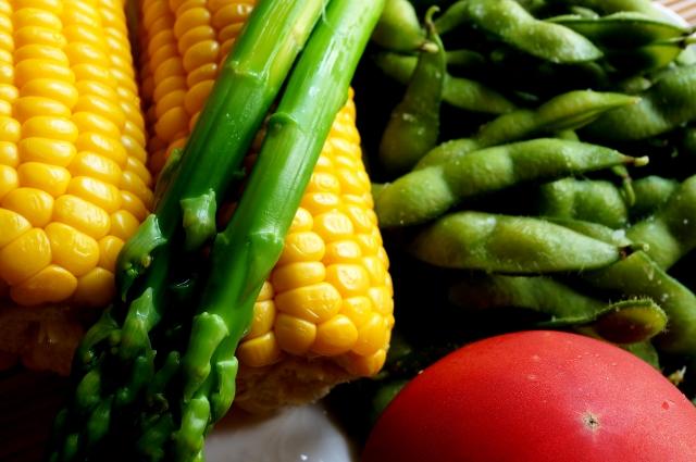 タンパク質野菜