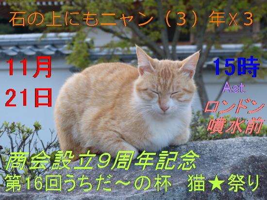 12_2015111616025164c.jpg