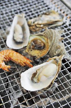 牡蠣_画像