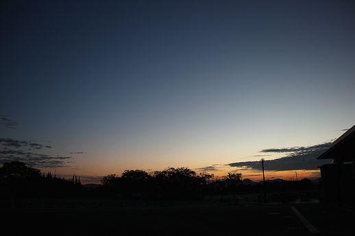 IMG_9283-1.jpg