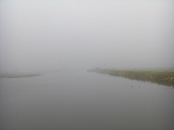 20151103印旛沼 (2)