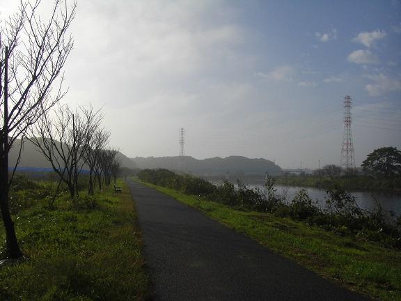 20151103印旛沼 (3)