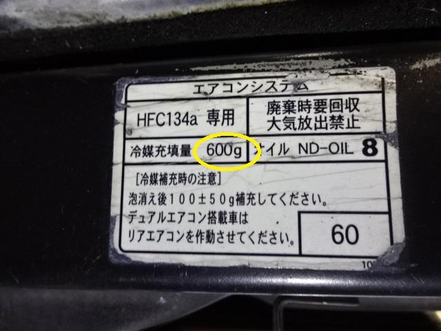 DSC01356.jpg