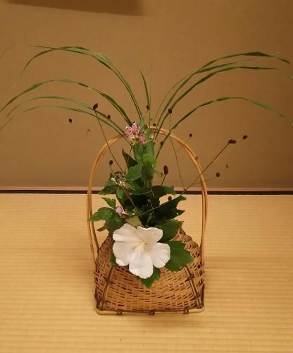 2016090 床の花