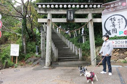 11-10浜名湖散歩