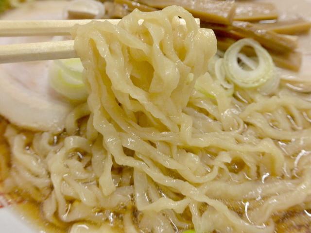 岡崎麺 (12)