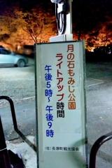 月の石もみじ公園 (2)