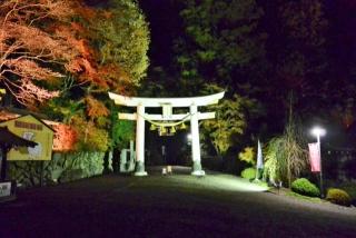 宝登山神社 (1)