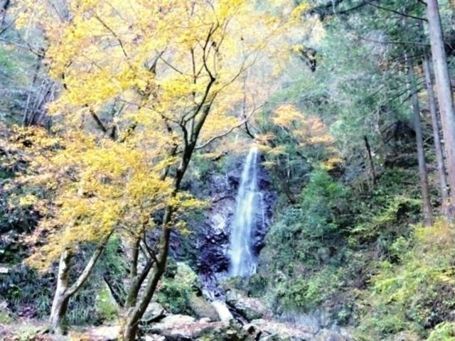 払沢の滝 (12)