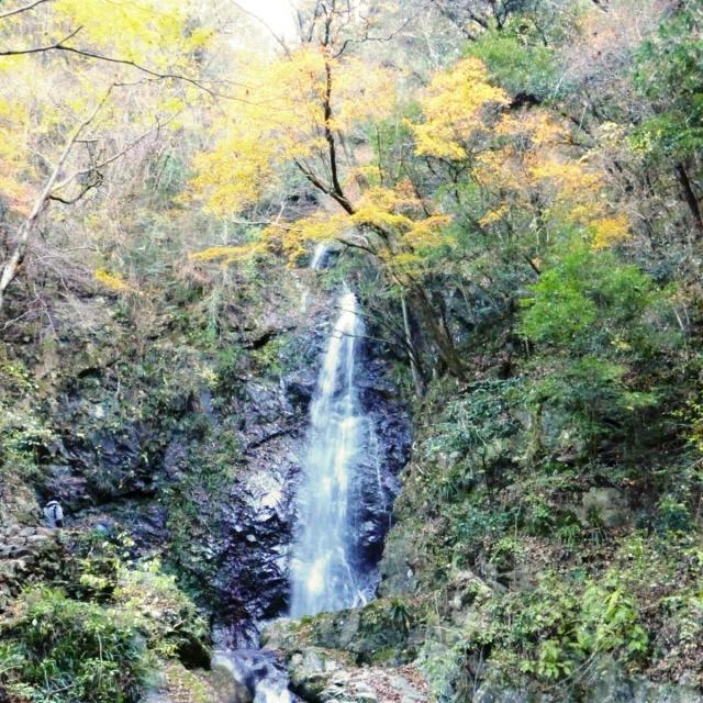 払沢の滝 (13)