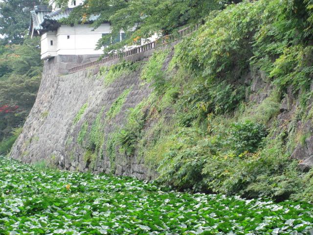 弘前城2013.09.21B