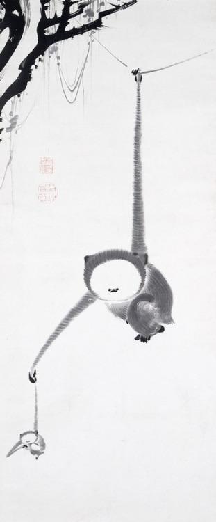 伊藤若冲 猿猴捕月図