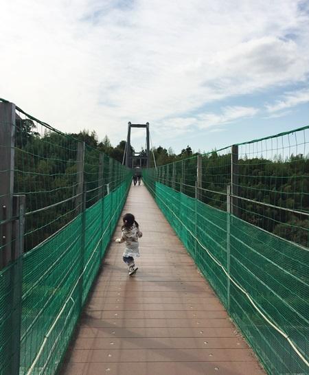 ハーベストの丘 吊り橋