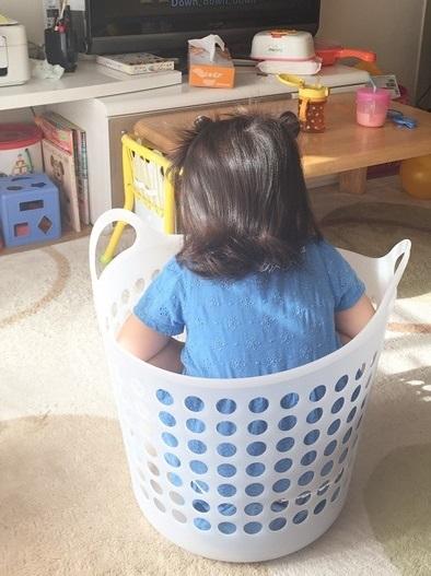雨の日洗濯かごの中にて座る