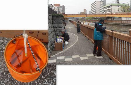 小名木川でハゼ釣り