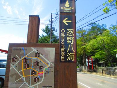 2015-09-yamanasi18.jpg
