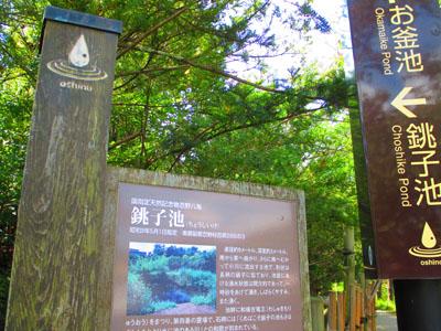 2015-09-yamanasi41.jpg