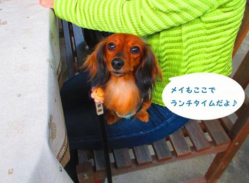 2015-09-yamanasi49.jpg