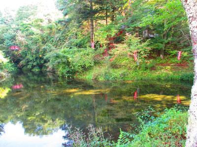 2015-09-yamanasi60.jpg