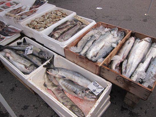 鮭 不漁 八戸朝市