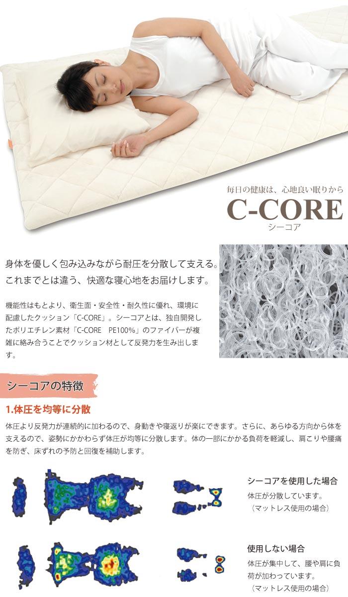 c-core_a006_1.jpg