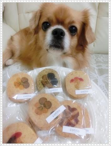 お花クッキー