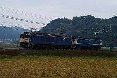 s-P1010954.jpg