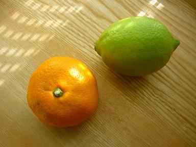 檸檬と蜜柑