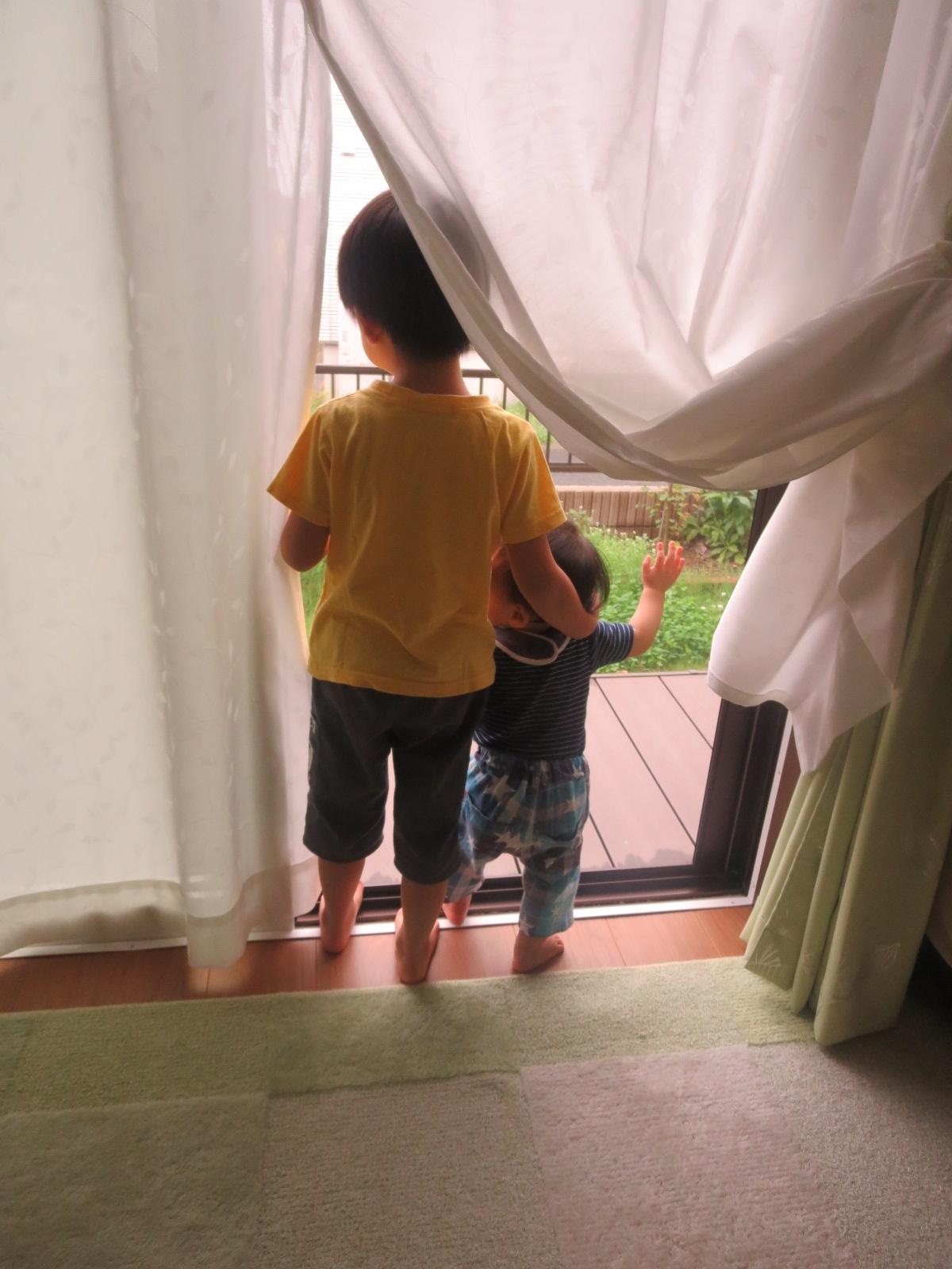 外を見る兄弟
