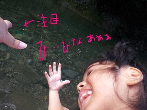 20120812_081000.jpg