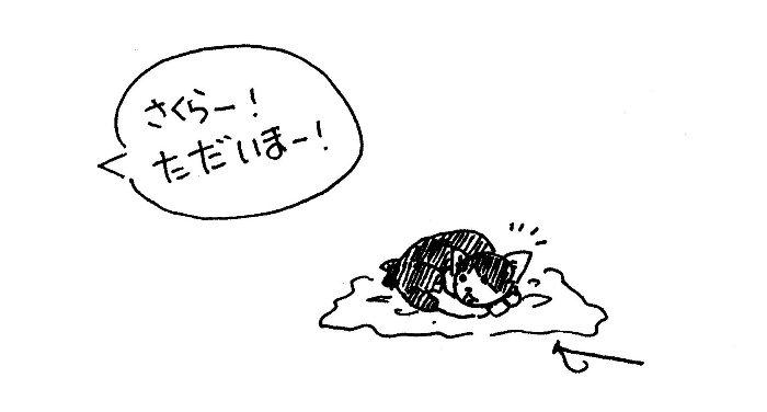 夕方のさくらさん-01
