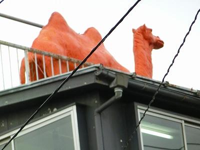 屋根にらくださん