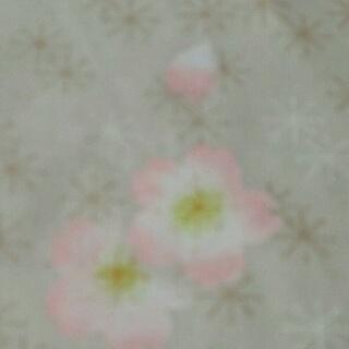 moblog_d24c711a.jpg