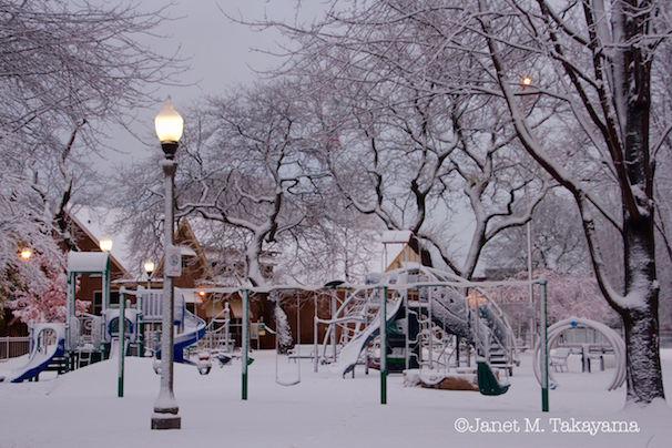 snowypark3.jpeg
